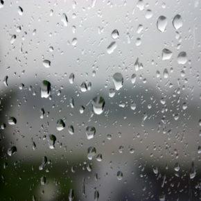 """DIARIO DE CAMPAÑA. DÍA 7 y 8: """"Llueve sobre mojado"""""""